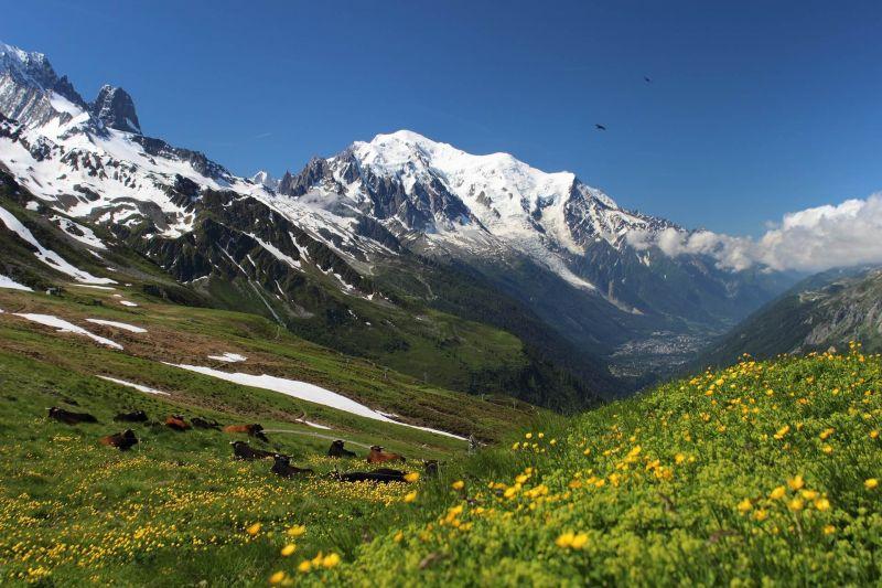 白朗峰,法國與義大利交界處(Mont Blanc)