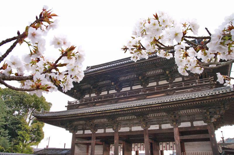 (圖/Kyoto-Picture@Flickr)