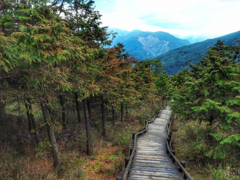雪霸森林公園步道(圖片提供/黃郁仁)