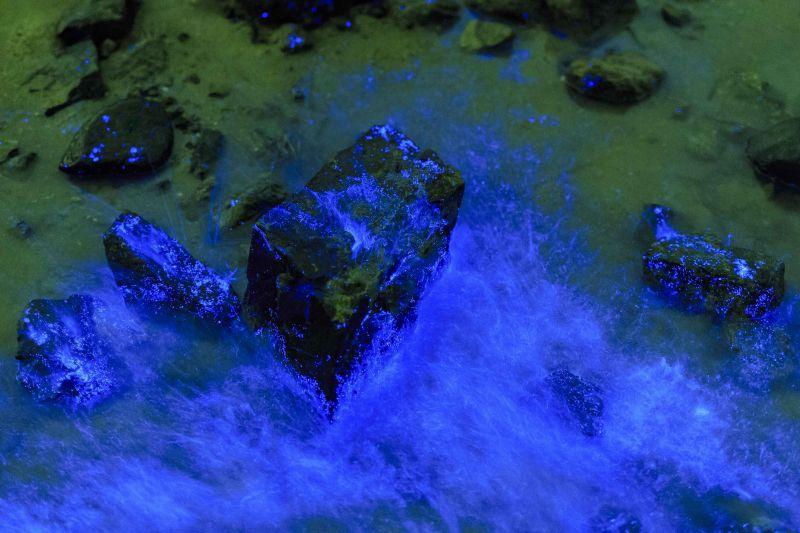 「第四屆藍眼淚攝影比賽」第一名作品:點石成金(王長琳攝) 圖/連江縣政府提供