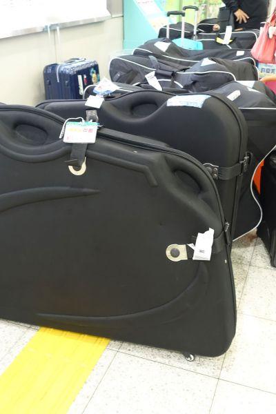 硬式攜車箱外型平整洗鍊,保護性居各種攜車箱之冠。(達叔 攝)