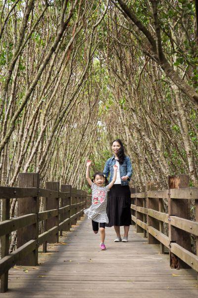 高大的紅樹林形成天然隧道,就像是龍貓出沒的奇幻森林。(蘇國輝攝影)