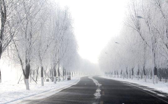渾河西峽谷霧淞(圖片來源:新浪博主浑河西峡谷生态公园)