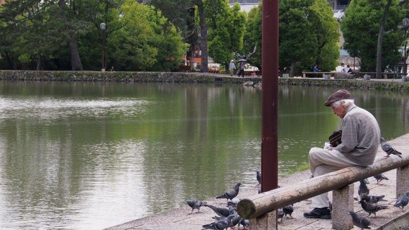京都散策;圖片提供:何熊貝/何凭融