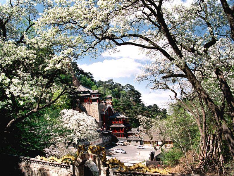 鞍山美麗的自然景觀-千山。