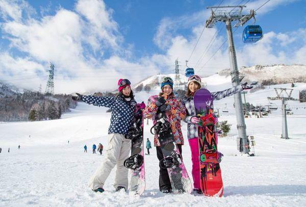 圖片來源:苗場滑雪場官網