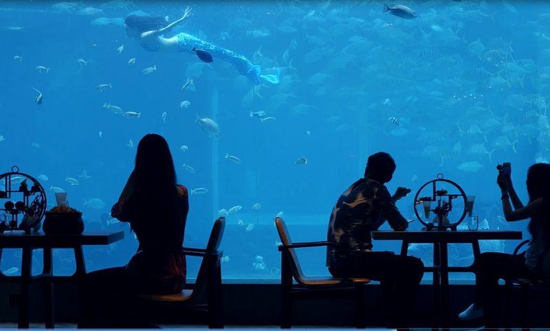 海底餐廳(圖片來源─海南省旅遊局)