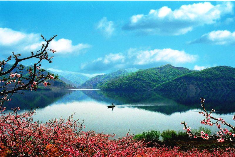 鴨綠江邊的河口桃花,宛如一幅中國水墨畫。