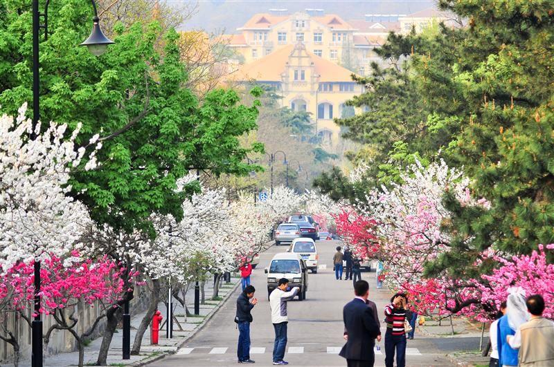 八大關-韶關路(圖片/山東省旅遊局提供)