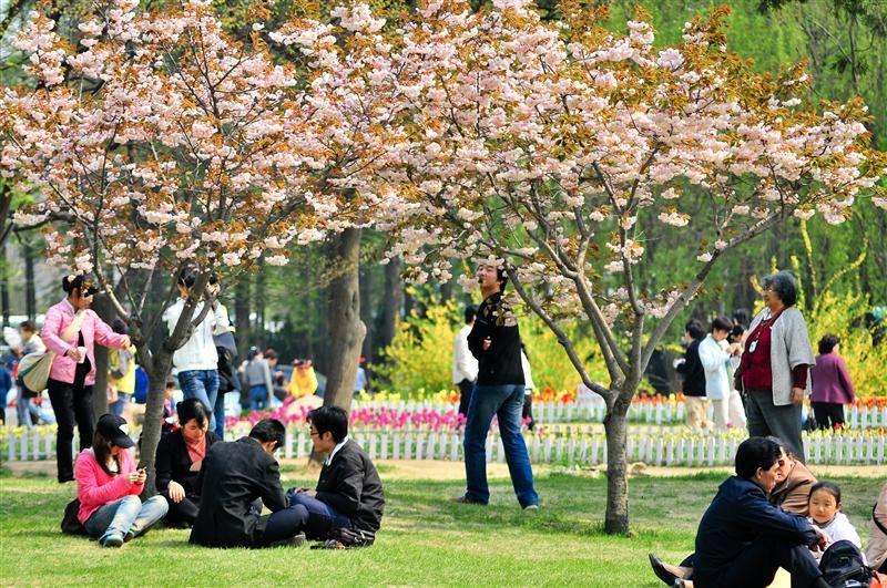 中山公園(圖片/山東省旅遊局提供)
