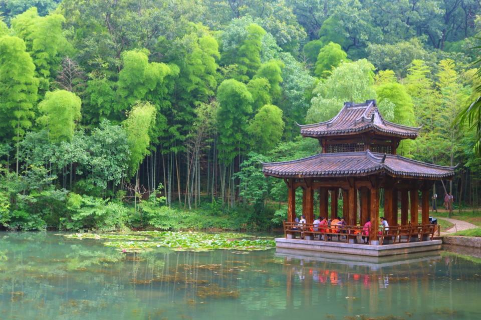 湖中小亭(圖片來源:陳浪提供)