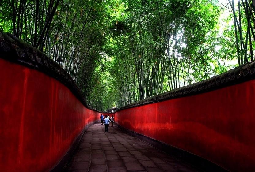 武侯祠紅牆竹影之美。(圖片來源欣傳媒)