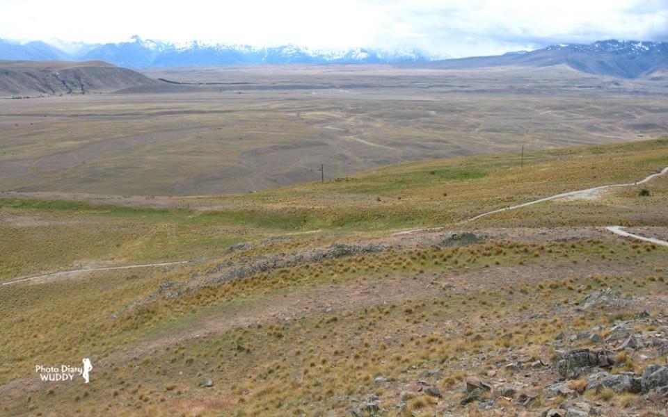 位居紐西蘭南島內陸的乾燥麥肯齊盆地(Mackenzie Basin)