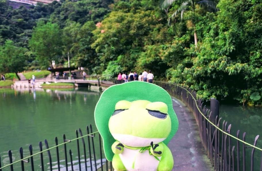 【旅遊】宜蘭「梅花湖」騎單車環湖趣,發現魯夫「惡魔果實」、吳淡如「小熊書房」