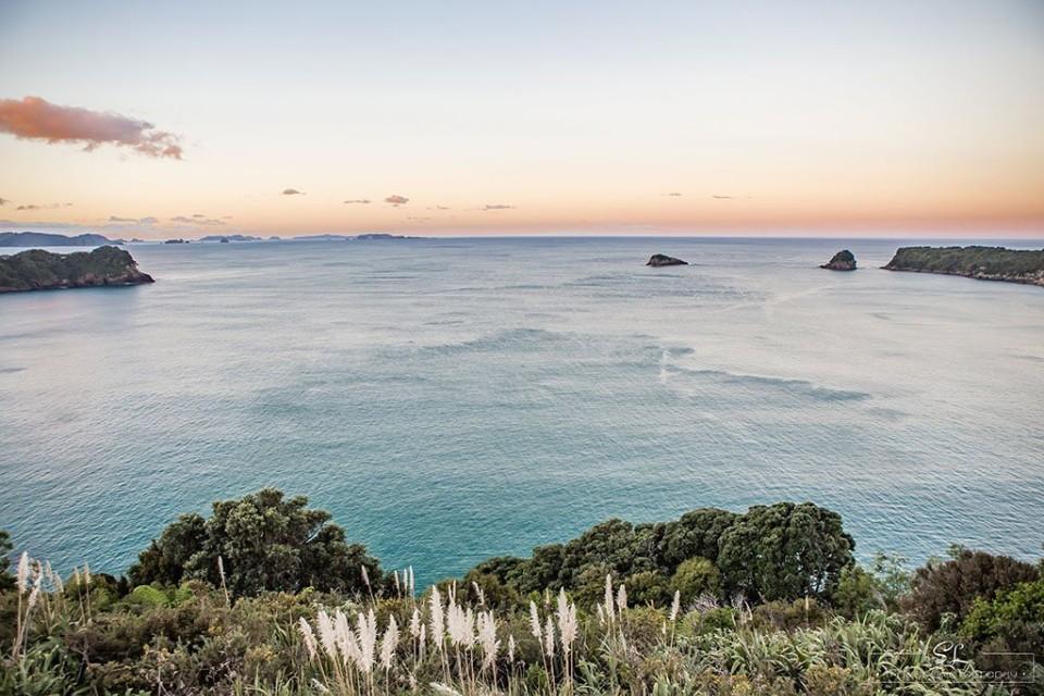紐西蘭 科羅曼德 教堂灣 紐西蘭自由行 紐西蘭自駕