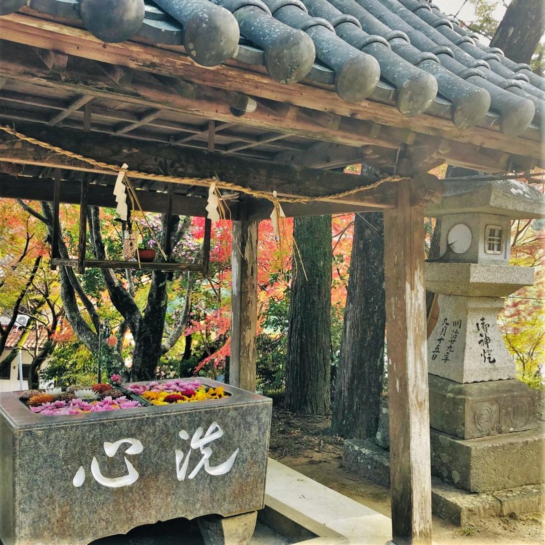 德島勝浦町坂本八幡神社