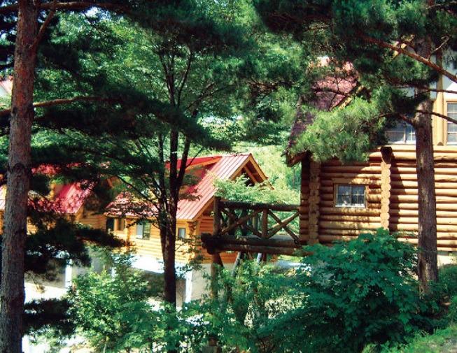 德島鹽塚高原渡假村森林小木屋