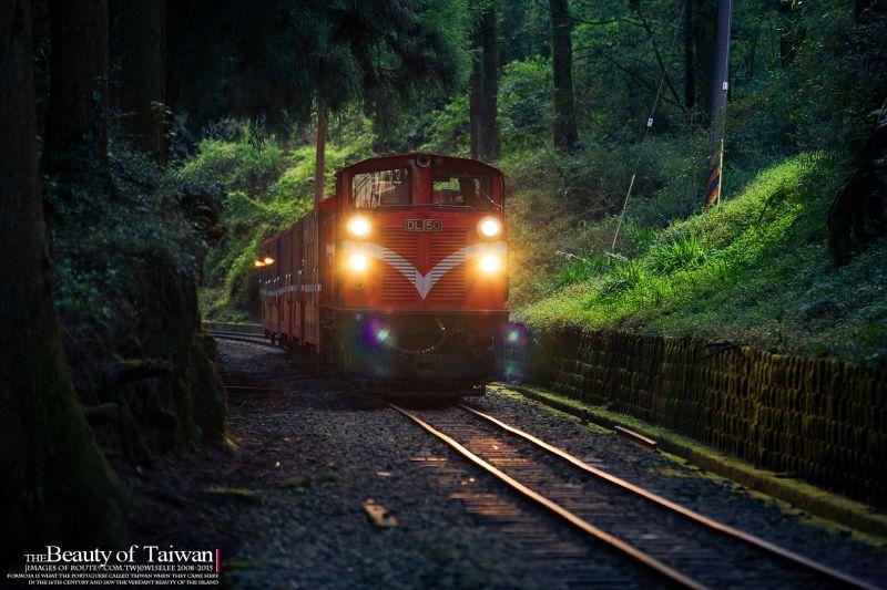 森林鐵軌火車  圖攝/哈米貓