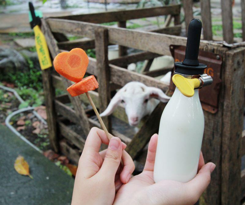 園區裡販售多種飼料,小豬、小羊、小雞、小兔子甚至是小老鼠,吃的都不一樣喔。(攝影陳德偉)