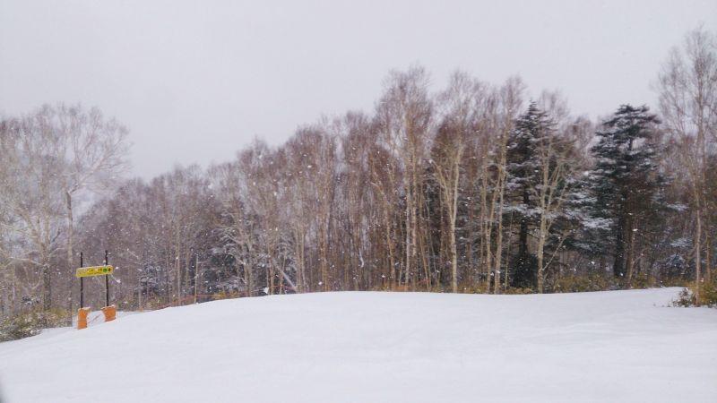 高天原四人纜車下來後一路往右走可以到タンネの森。(photo by 阿福)