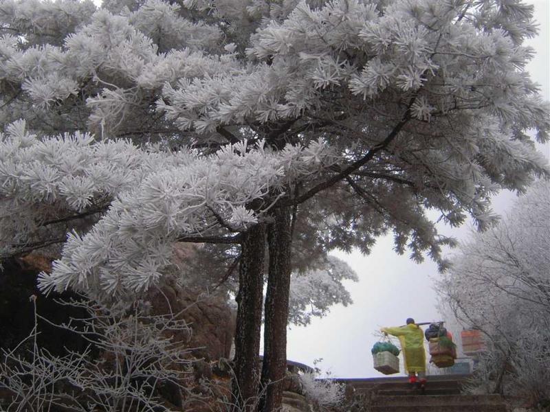 冬雪黃山美景。圖片來源:安徽繁體官網 http://bit.ly/1RrPEo8