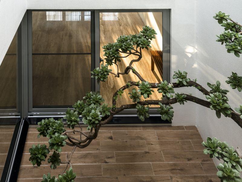 室內一景;圖片提供:大山建築與室內設計團隊
