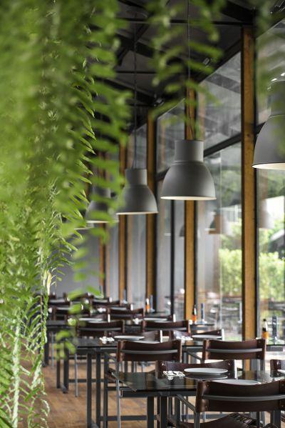 The Jam Factory園區內充滿綠意的泰式餐廳;圖片提供/DBALP