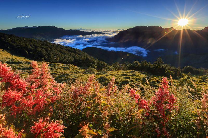 合歡的秋晨,色彩斑斕讓人驚艷。圖/鄭妍妍 提供