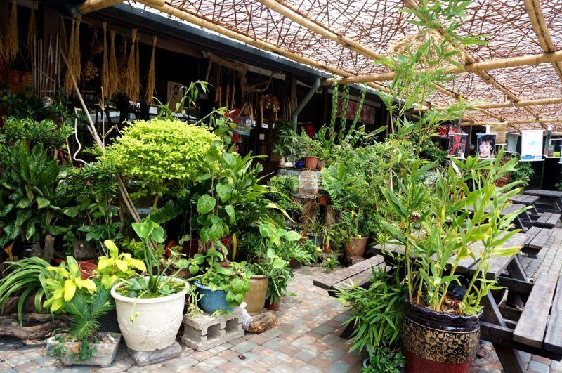 東市場後方空間,擁有許多綠意盎然的植栽。(Sheila Hsu攝影)