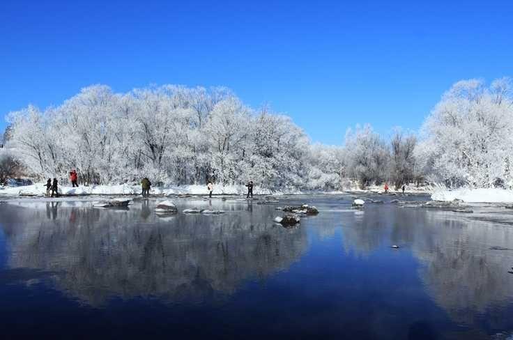 東北霧淞是攝影家最愛的冬景。